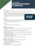 Temario DIP AduaneraLogistica 2018