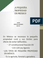 11. LA PEQUEÑA PROPIEDAD EN MEXICO.pptx