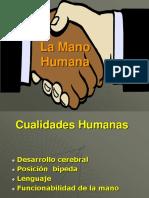 La mano humana