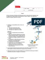 Ficha de Avaliação Sumativa n.º 3