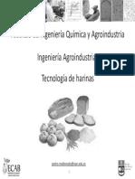 Clase 11c - Tecnologia de Harinas 2015B Copy2