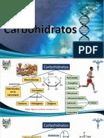 Practica 6 - Carbohidratos