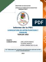 INFORME DE LA PEC 2018.docx
