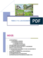 21714773.pdf