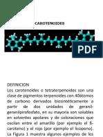 CAROTENOIDES 2011