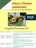 Floricultura 123