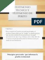 TESTIMONIO TECNICO Y TESTIMONIO DE PERITO.pptx