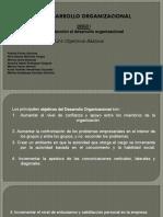 1.2.4 Objetivos Basicos Desarrollo organizacional