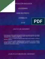 Exposición biología LISOSOMAS