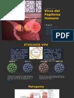 Papiloma Virus Humano - Medicina 1