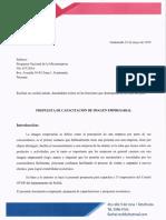 PERFIL CAPACITACION.pdf