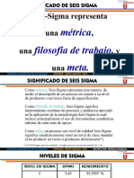 CAPSULA #1 PROYECTO SEIS SIGMA .pdf