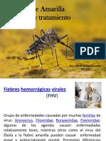 FA-clinica-y-tto.pdf