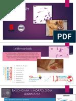 Leishmania Spp (1)
