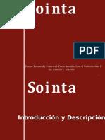 Presentación SOINTA
