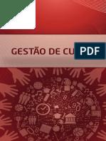 Gestão de Custos No Setor Público - Curso Gestão Pública - Faculdade Anhanguera EAD