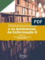 Biblioteconomia e Os Ambientes de Informacao 2.Indd