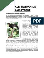 Animales Nativos de Lambayeque