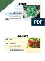 Caracter i Sticas de Plant As