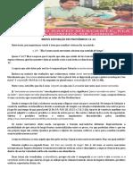 Pv 31.14 - Exposição Para PDF.