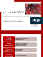 hemostasia.pptx