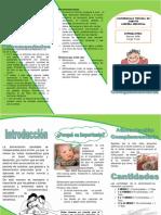 Alimentacioncomplementaria 121101211620 Phpapp02 Convertido