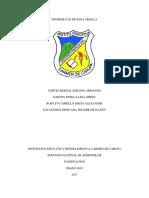 Informe Pan de Papa Criolla