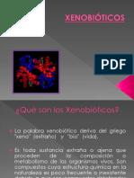 79043192-XENOBIOTICOS.pptx