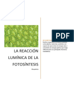 Fotosíntesis Bioquímica