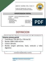 Hipertension Portal