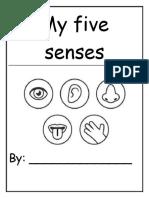 My Five Senses - Project