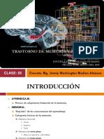 Quinta Clase - Neuropsicología