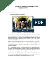 Empresas Peruanas Encargadas Principalmente Del Medio Ambiente