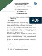 Diagnóstico Institucional Feli