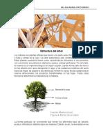 Estructura del árbol.pdf
