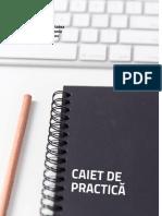 caiet de practica stiinte ingineresti
