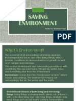 Saving Environment