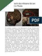 Microcip Vechi de Milioane de Ani Descoperit in Rusia
