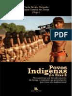 LIVRO - Povos Indígenas No Brasil