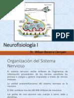 Neuro Fisio USMP
