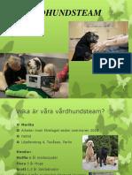 VÅRDHUNDSTEAM Presentation
