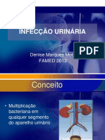 infecçao_urinaria_2012.-ppt.ppt