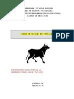 3767600-Apostila-Manejo-Pastagens[1]