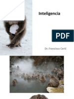 Clase+9+Inteligencia.pdf