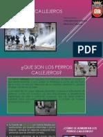 Presentacion Los Perros Callejeros