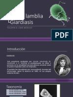 giardialambliagiardiasis-161127193134