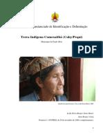 relatorio_funai.pdf