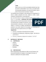 Informe de Planta Leon Rojo