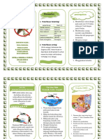 Leaflet Dbd2
