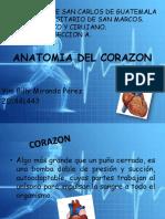Corazón1.pptx